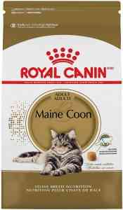 Dry maine coon