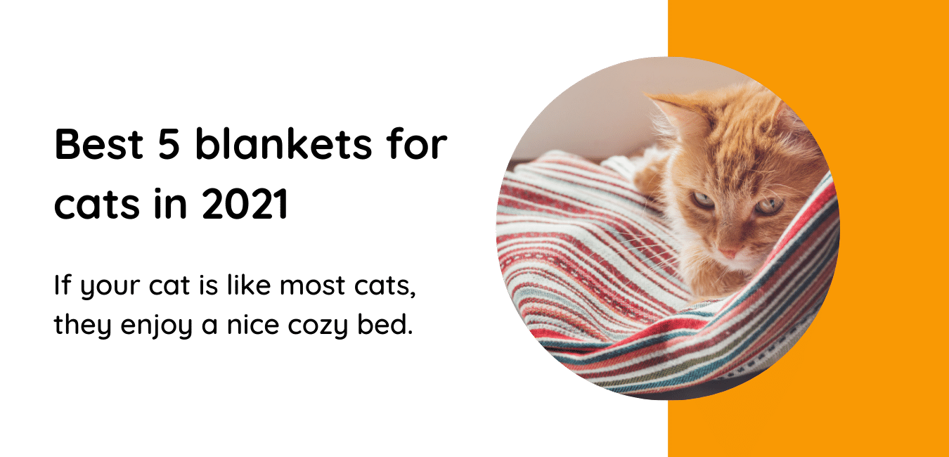 blankets for cats